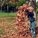 Fall Maintenance   Sell Your House for Cash